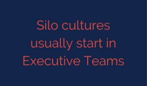 Silo cultures usually start in Executive Teams