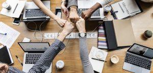 Success Culture networking